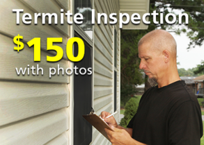 Corky's Termite Inspection with Photos - $150