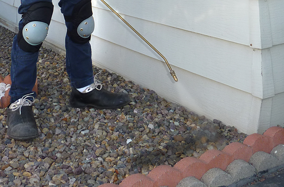 Property perimeters are sprayed to prevent migrating and foraging insects from entering the property.