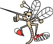 mosquito-in-red-sneekers-clipart-k5770244