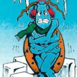 freezing-bugs